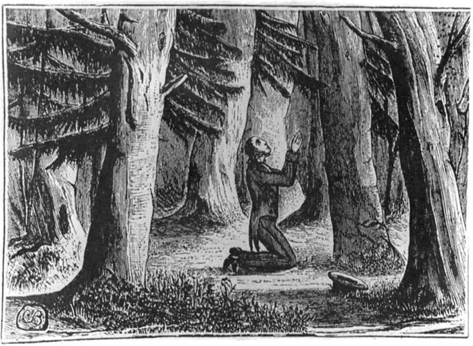 Finney-in-the-Woods