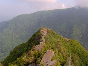 Chimney Tops, Great Smoky Mountain National Park. Brian Stansberry, Wikimedia Commons. This file is licensed under the Creative Commons Attribution-Share Alike 3.0 Unported license.