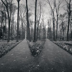 parting_of_the_ways_by_kapanaga-d4fssmv