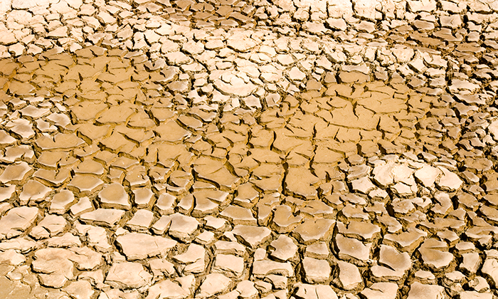 Drought-dreamstime_xxl_9345405