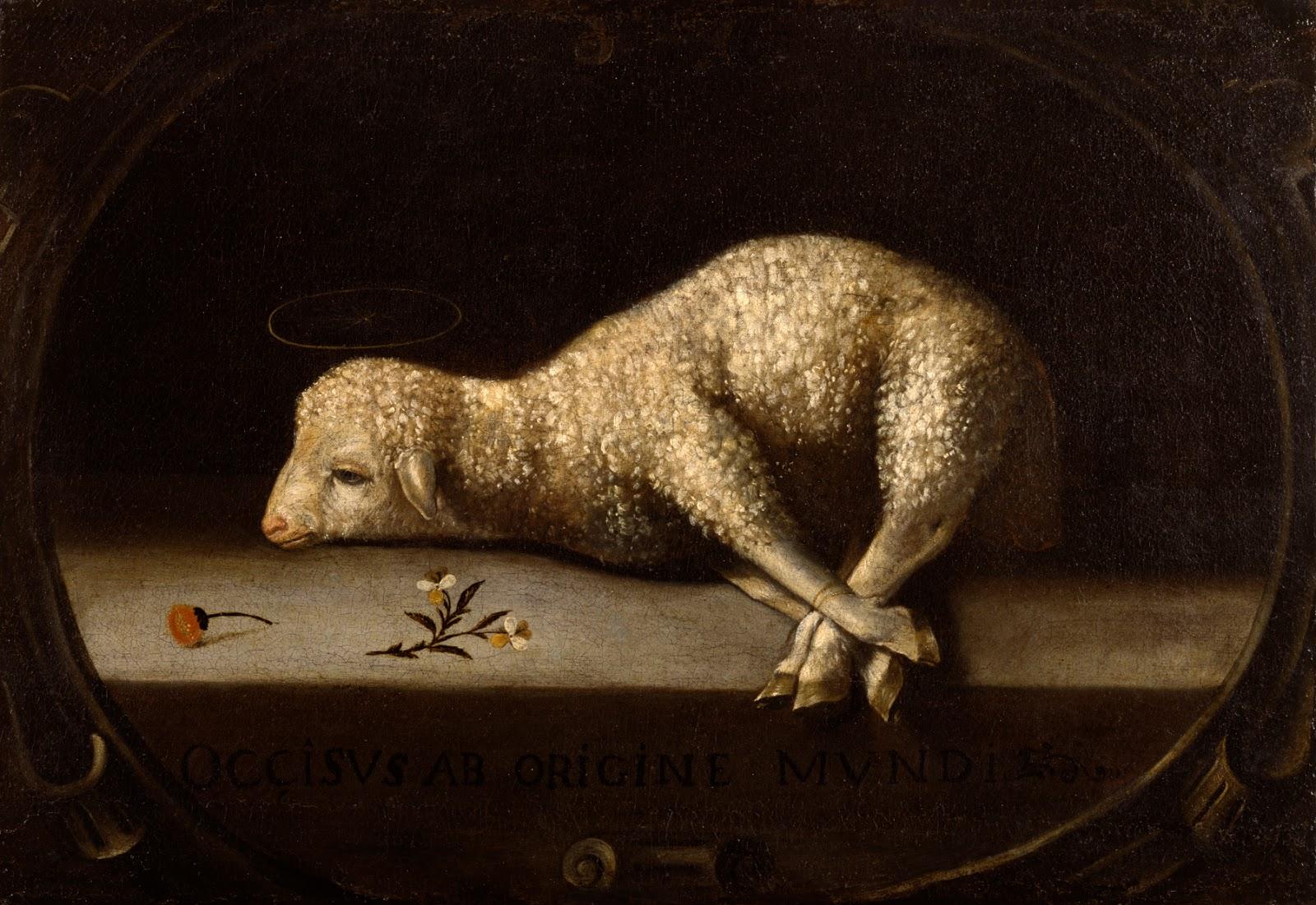 sacrificial-lamb-better