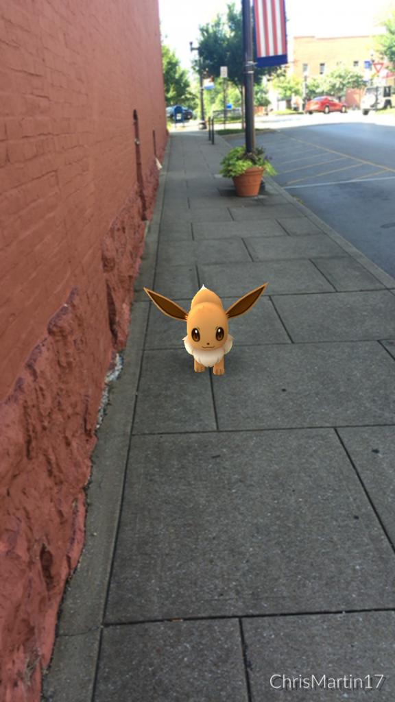 My friend, Chris Martin, captured this Eevee near Main Street in my hometown.