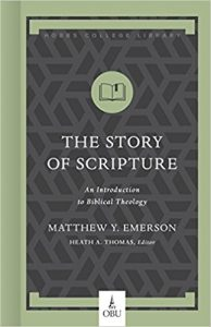 The cover of 'The Story of Scripture'