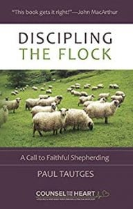 The cover of Discipling the Flock: A Call to Faithful Shepherding