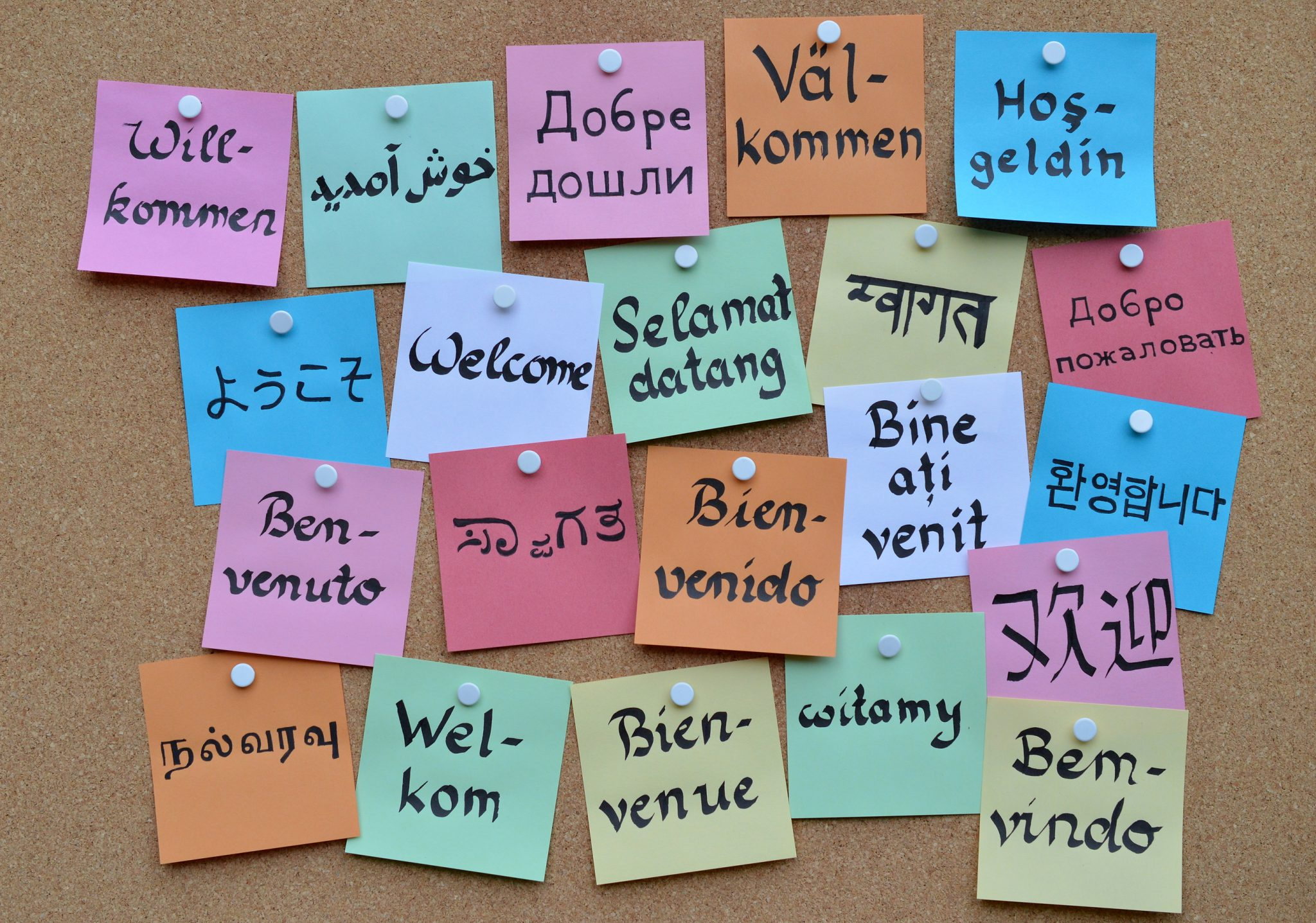 What We Lose When We Lose Language-Learning