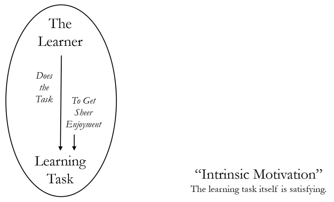 Figure 1: Intrinsic Motivation