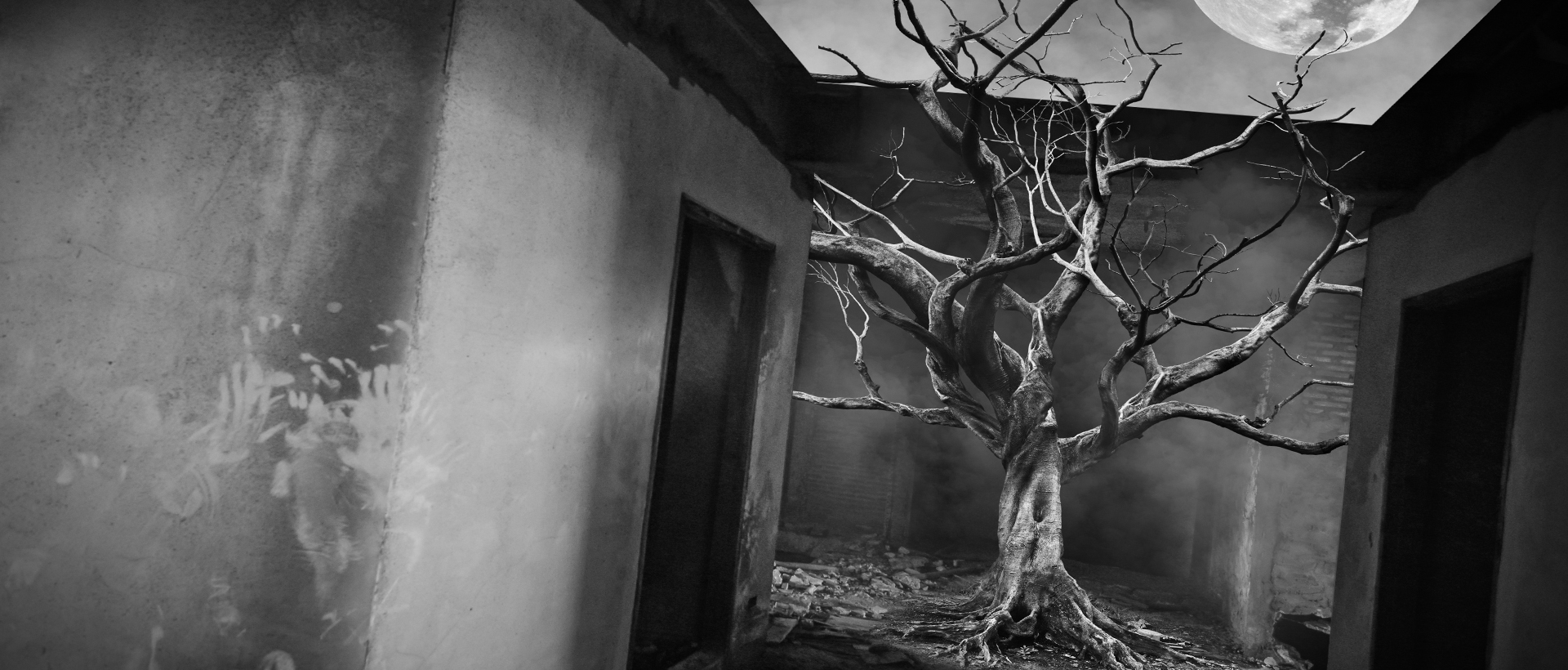 Generational curses image of dead tree in home setting in black and white