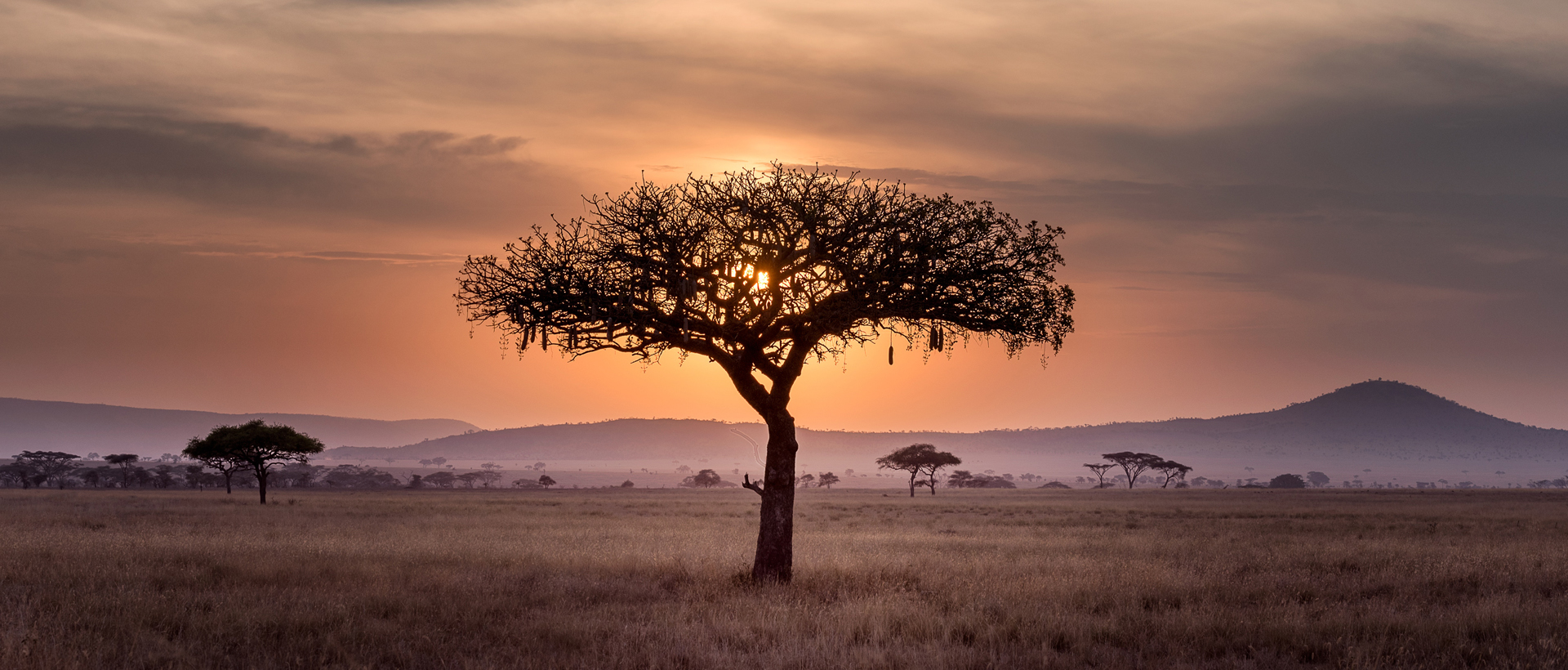 What is the Gospel? Pastor Lameck Byonge traces the holsitc story of the Gospel from the Garden of Eden to today of God's faithful work to reconciliation.