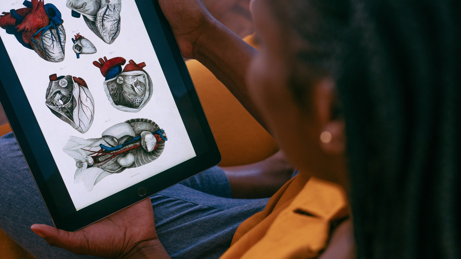 African woman on sofa looking at heart anatomy on iPad