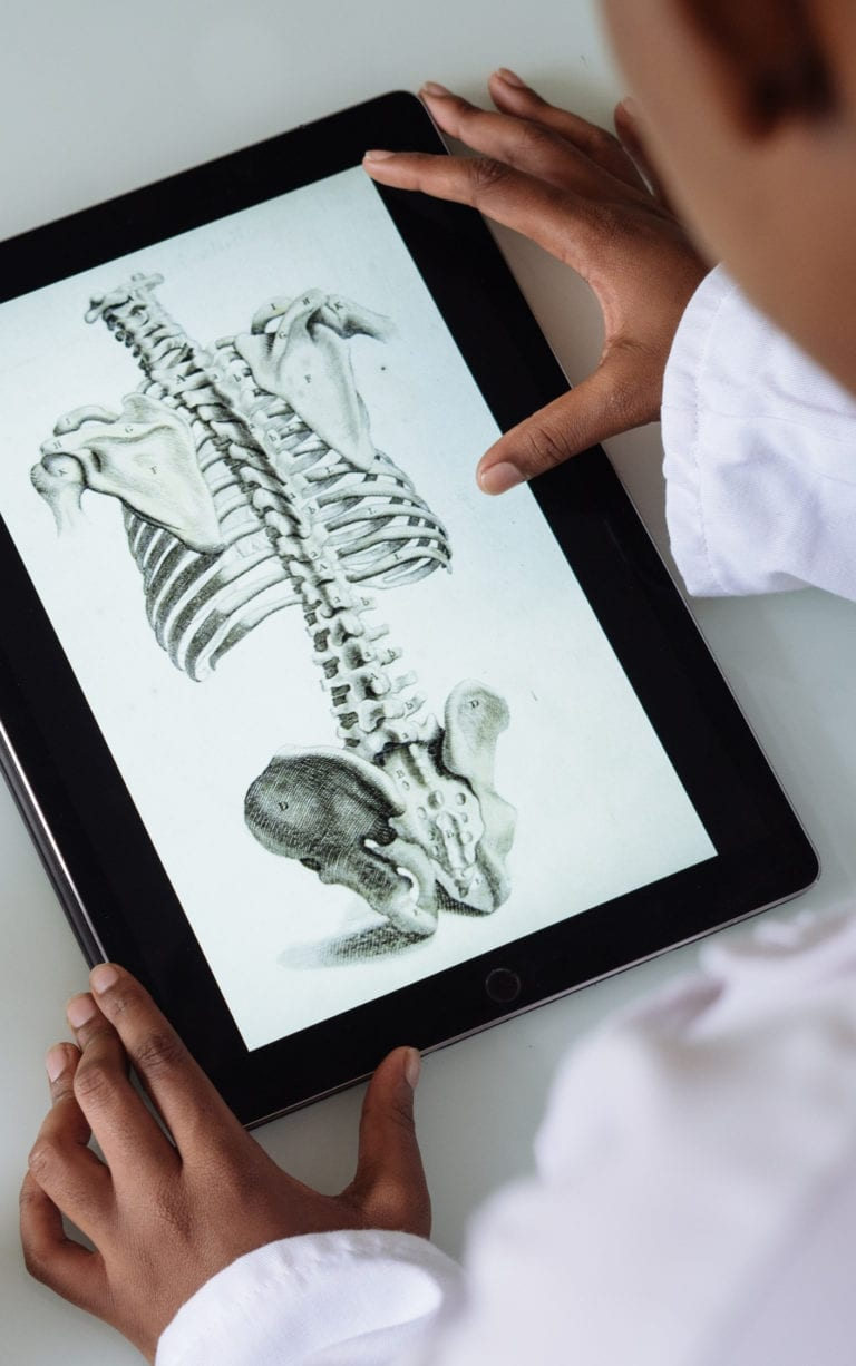 The Anatomy of Sin Series Cover - skeleton on a laptop