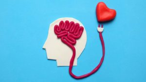 Loving God with your mind - A brain organ connected to a heart, made out of play dough